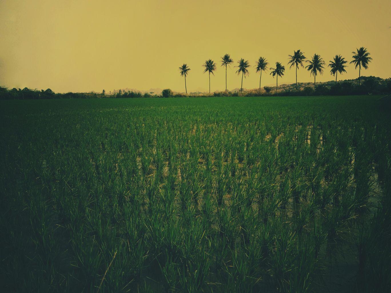 Photo of Anegundi By Abhishek.Banakar