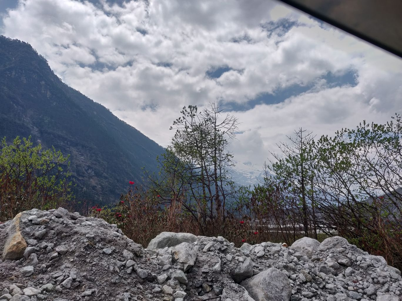 Photo of Yumthang By Anjali Jain