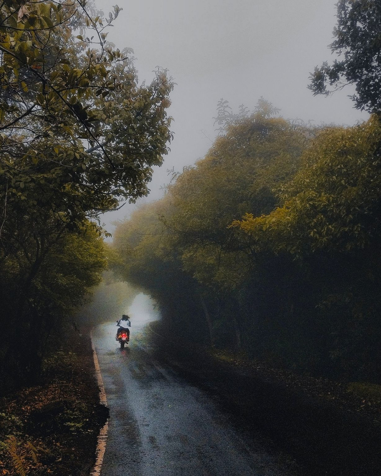 Photo of Mahabaleshwar By soham acharya