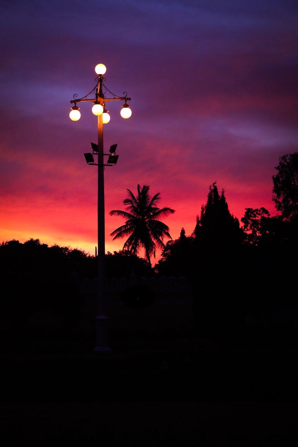 Photo of Mysore By Avijit Sharma