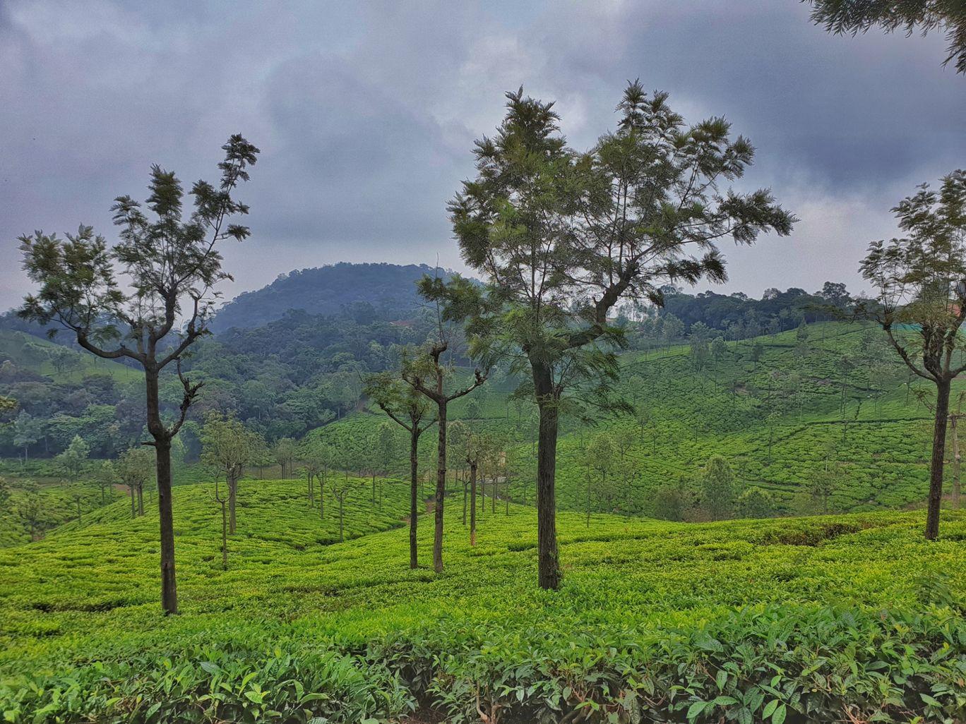 Photo of Tamil Nadu By Avijit Sharma