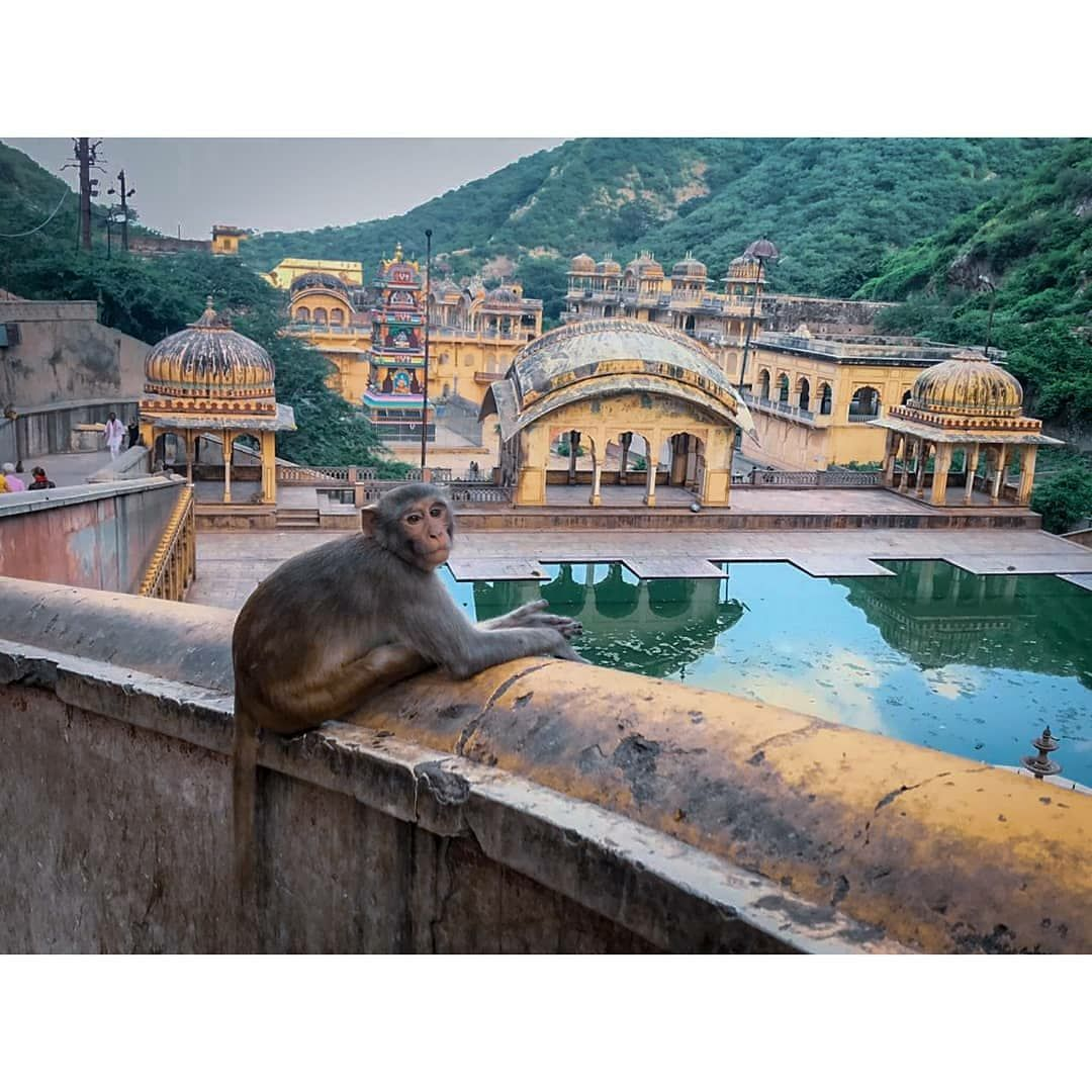 Photo of Rajasthan By Vipul Bhargav