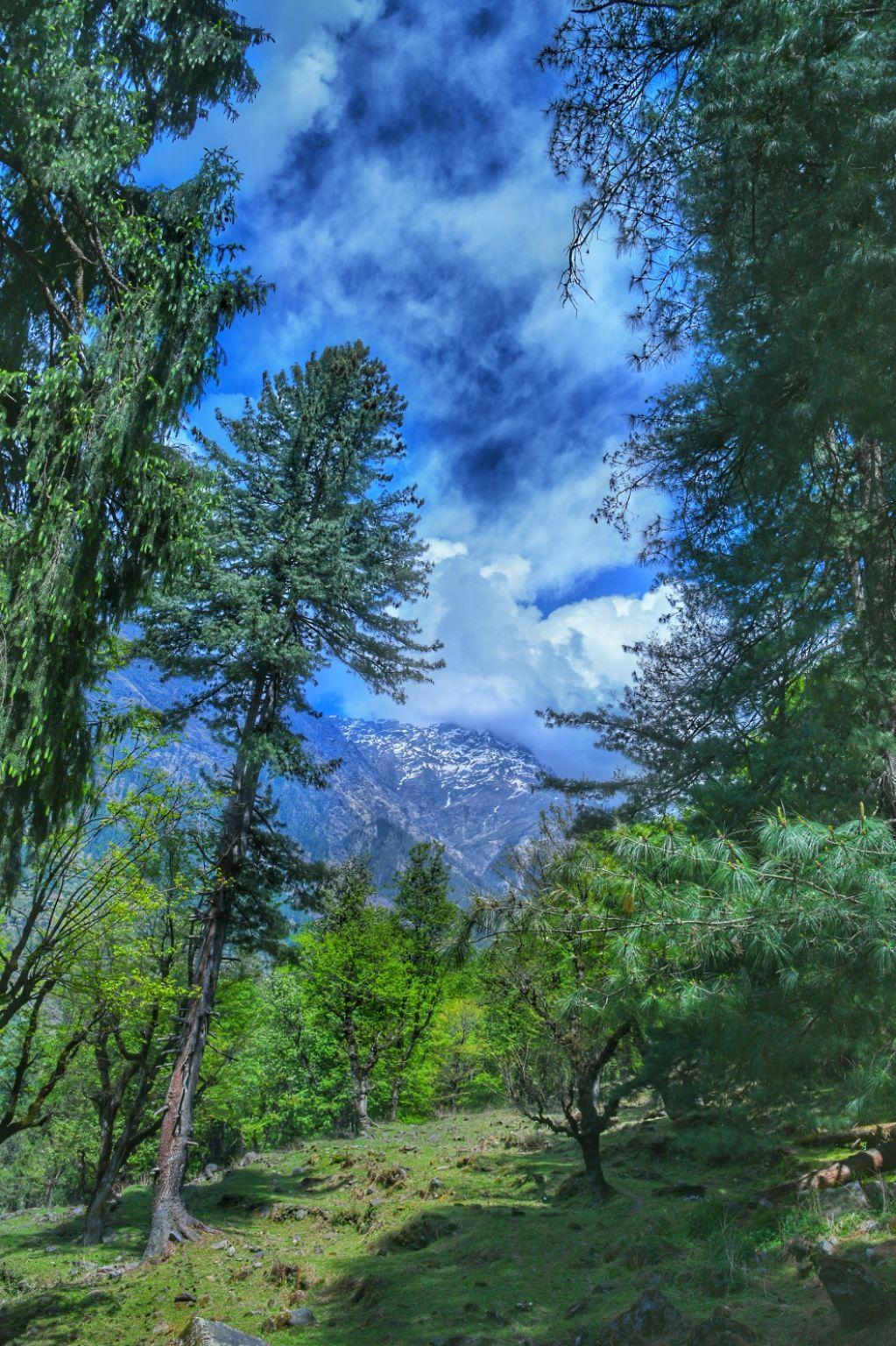 Photo of Himachal Pradesh By Ahamed Ramees
