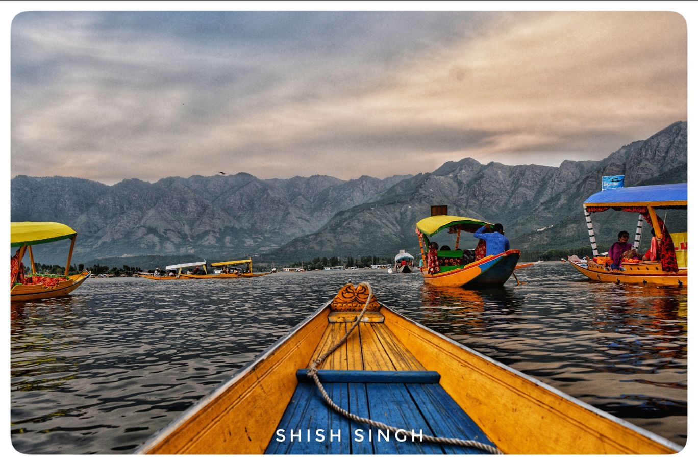 Photo of Dal Lake By shish ranjan singh