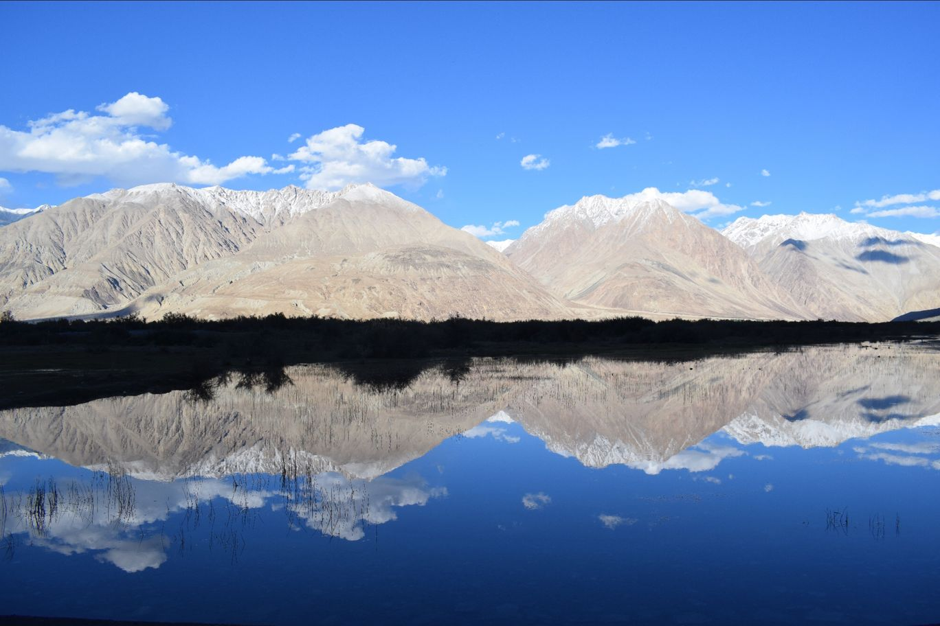 Photo of Ladakh By Pooja Tiwary