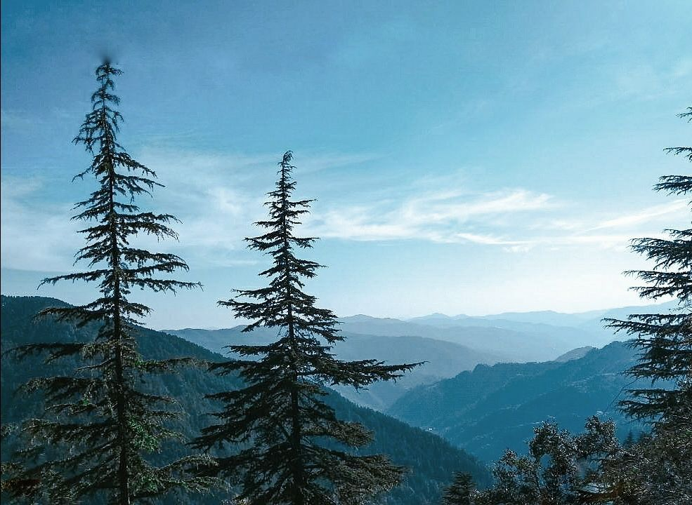 Photo of Shimla By The traveller