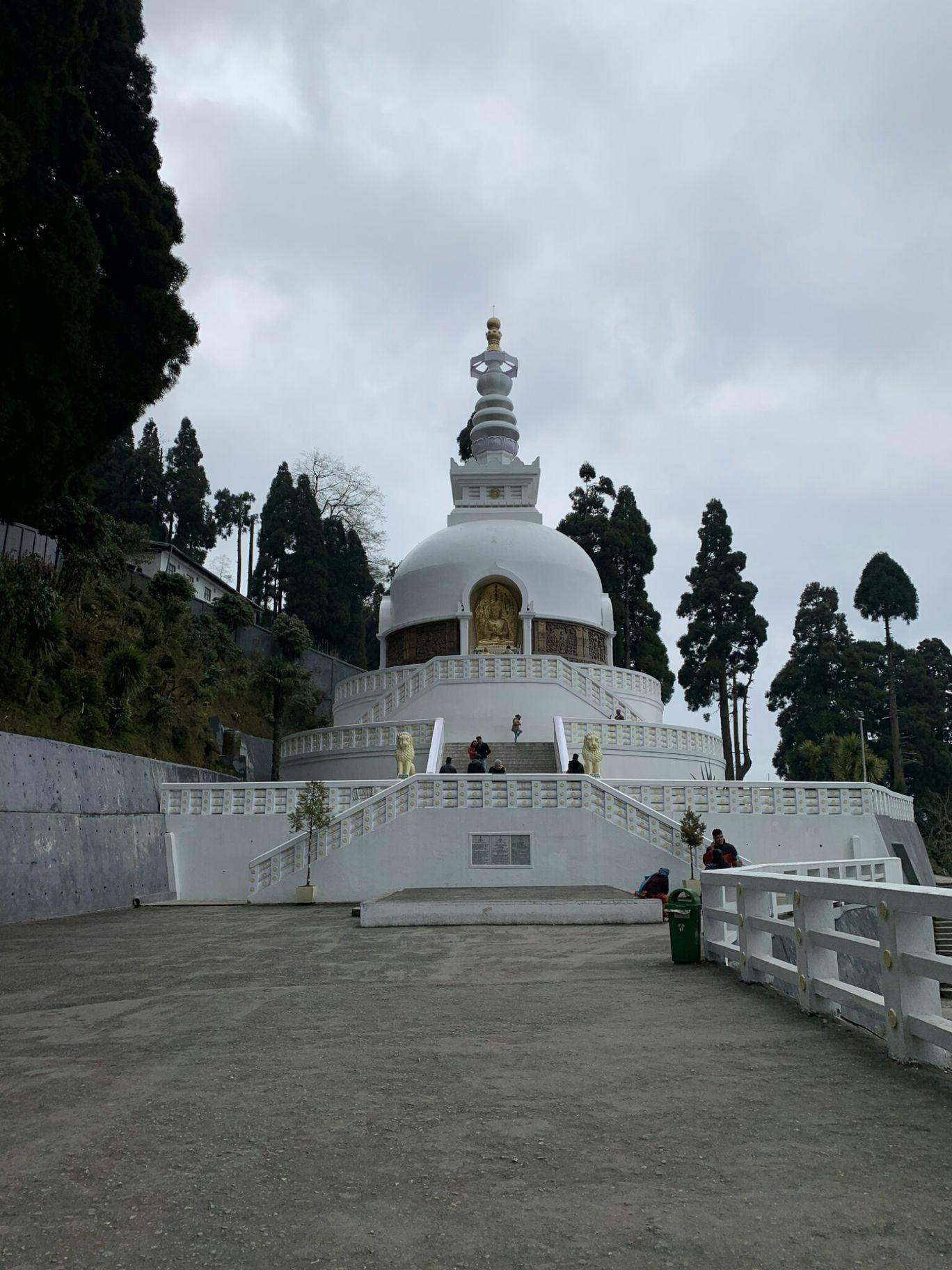 Photo of Darjeeling By ziasiddik