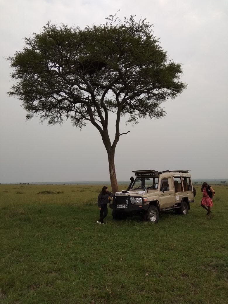 Photo of Masai Mara National Reserve By BULBUL on the wing