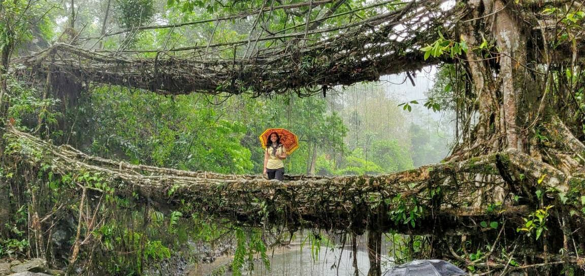 Photo of Double Decker Living Root Bridge By Urvi Sharma