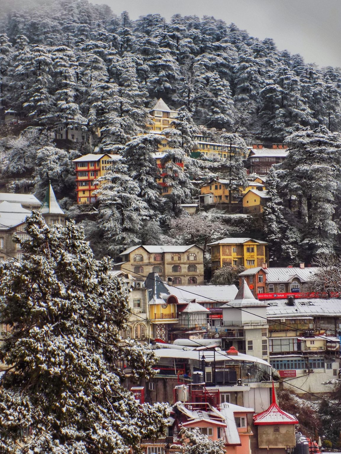 Photo of Shimla By Ayindrila Rana
