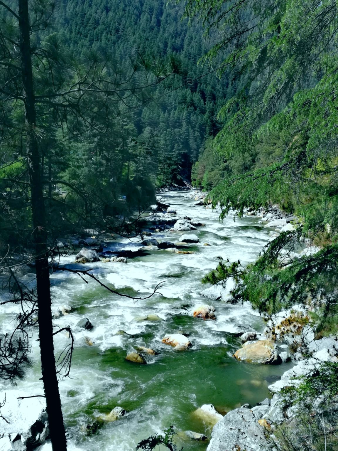 Photo of Kasol By V.K. subodh