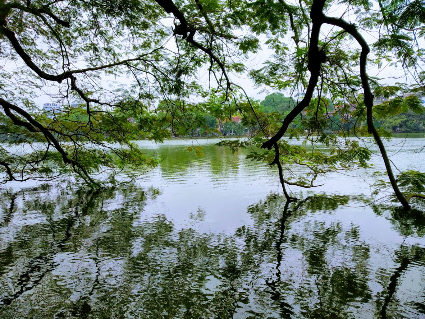 Photo of Hoàn Kiếm Lake By earth.nature.lovers