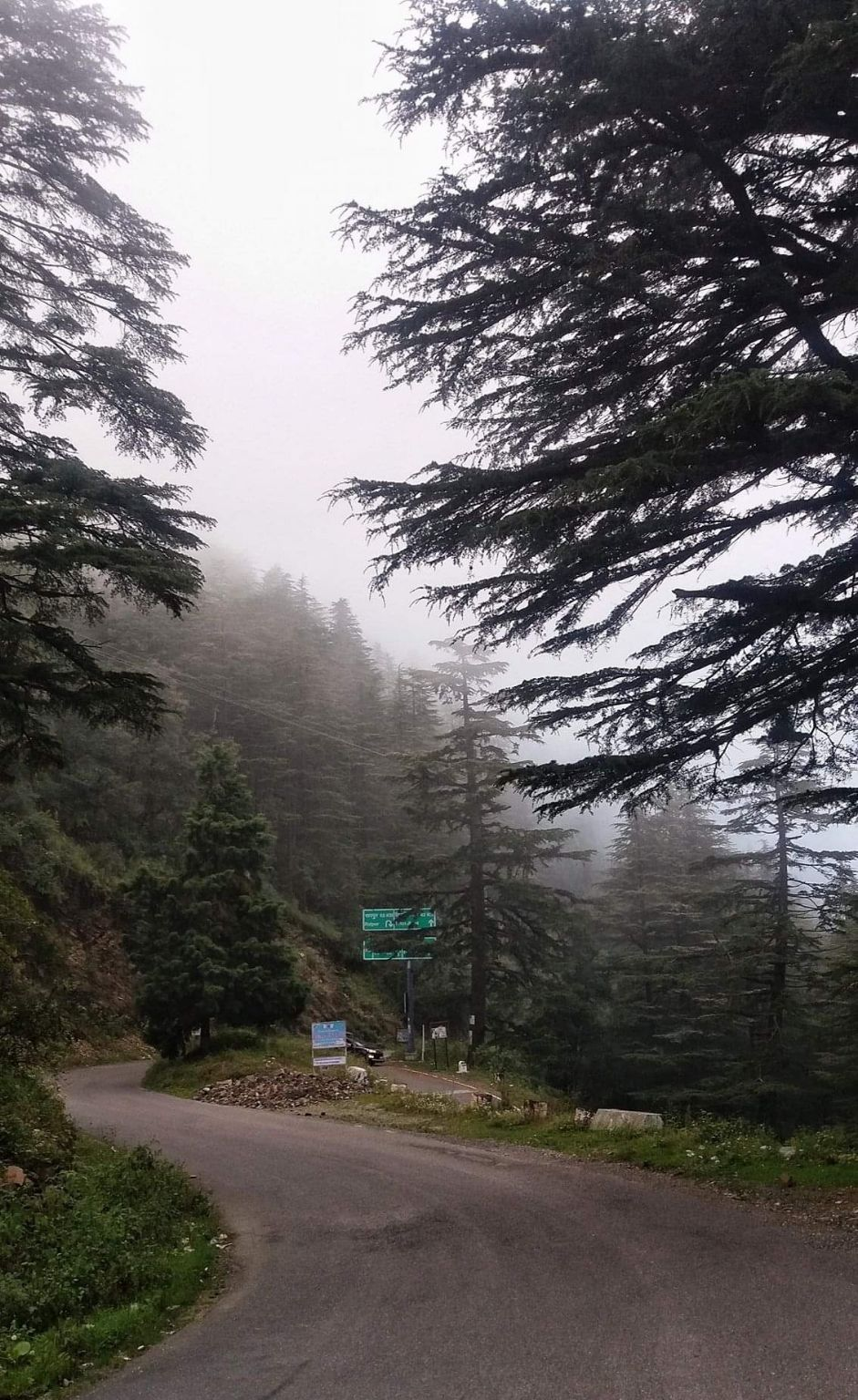 Photo of Dhanaulti By Amit Photography