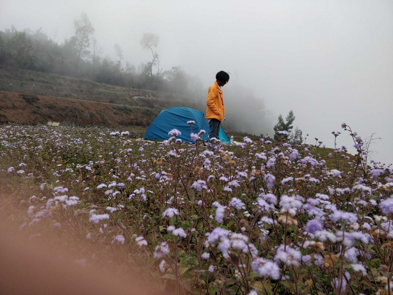 Photo of Kodaikanal By Nivedin Suryan