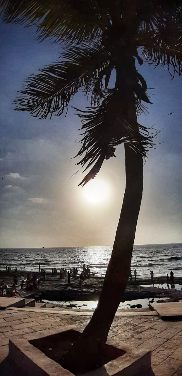 Photo of Bandra Worli Sea Link By Kedar Patil