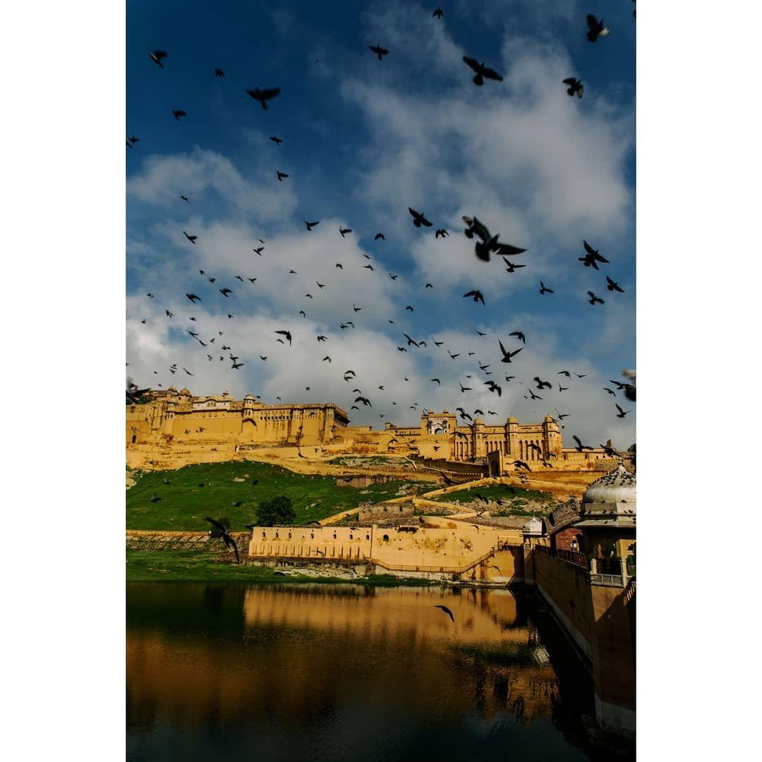 Photo of Jaipur By Tanya Sadh