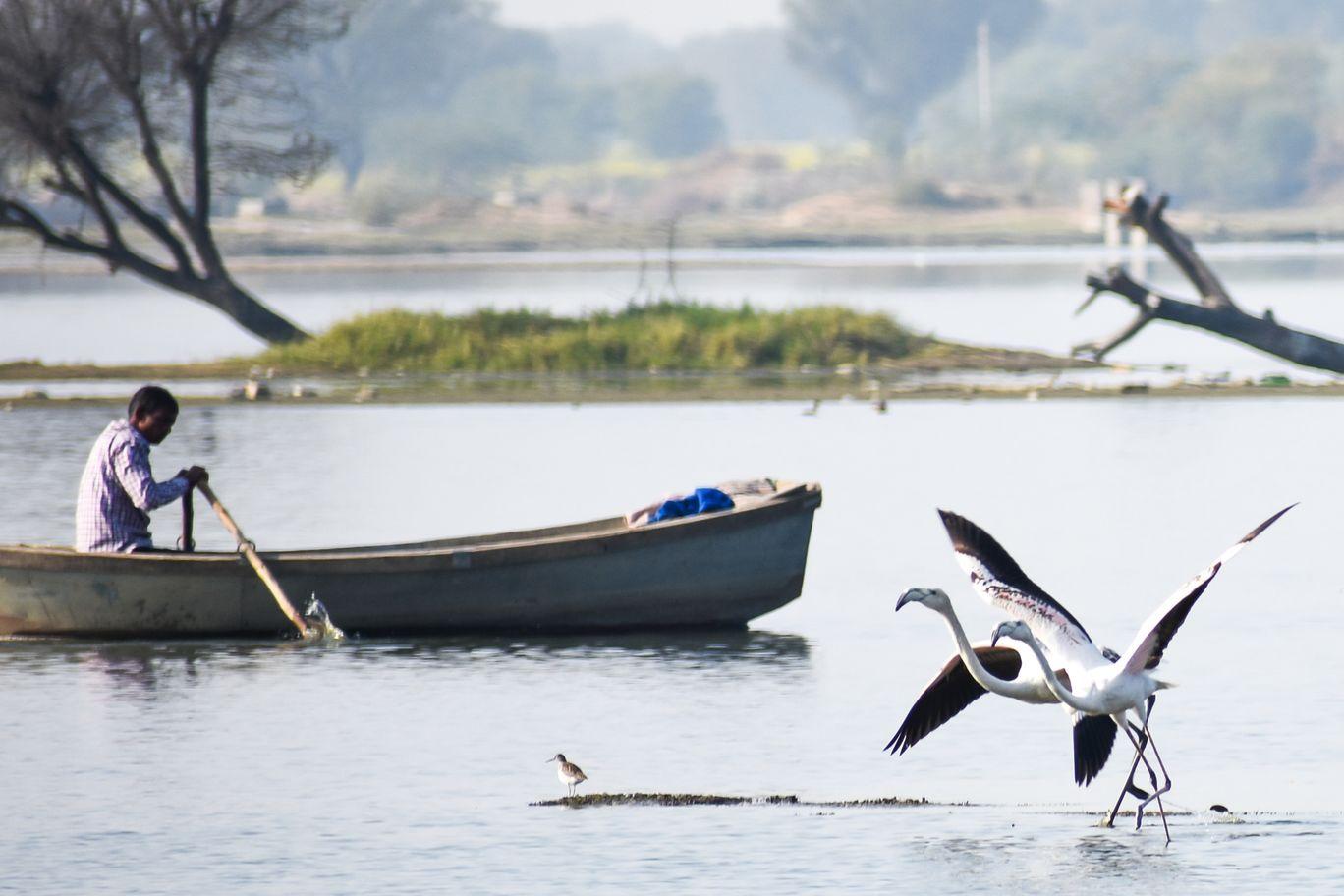 Photo of Chandlai Lake By Aviral Arora
