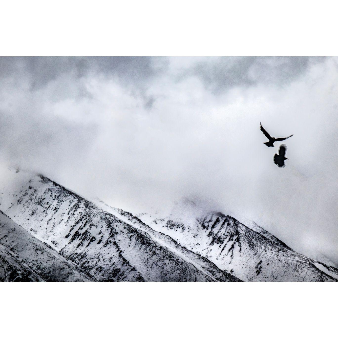 Photo of Ladakh By Abhishek Singh