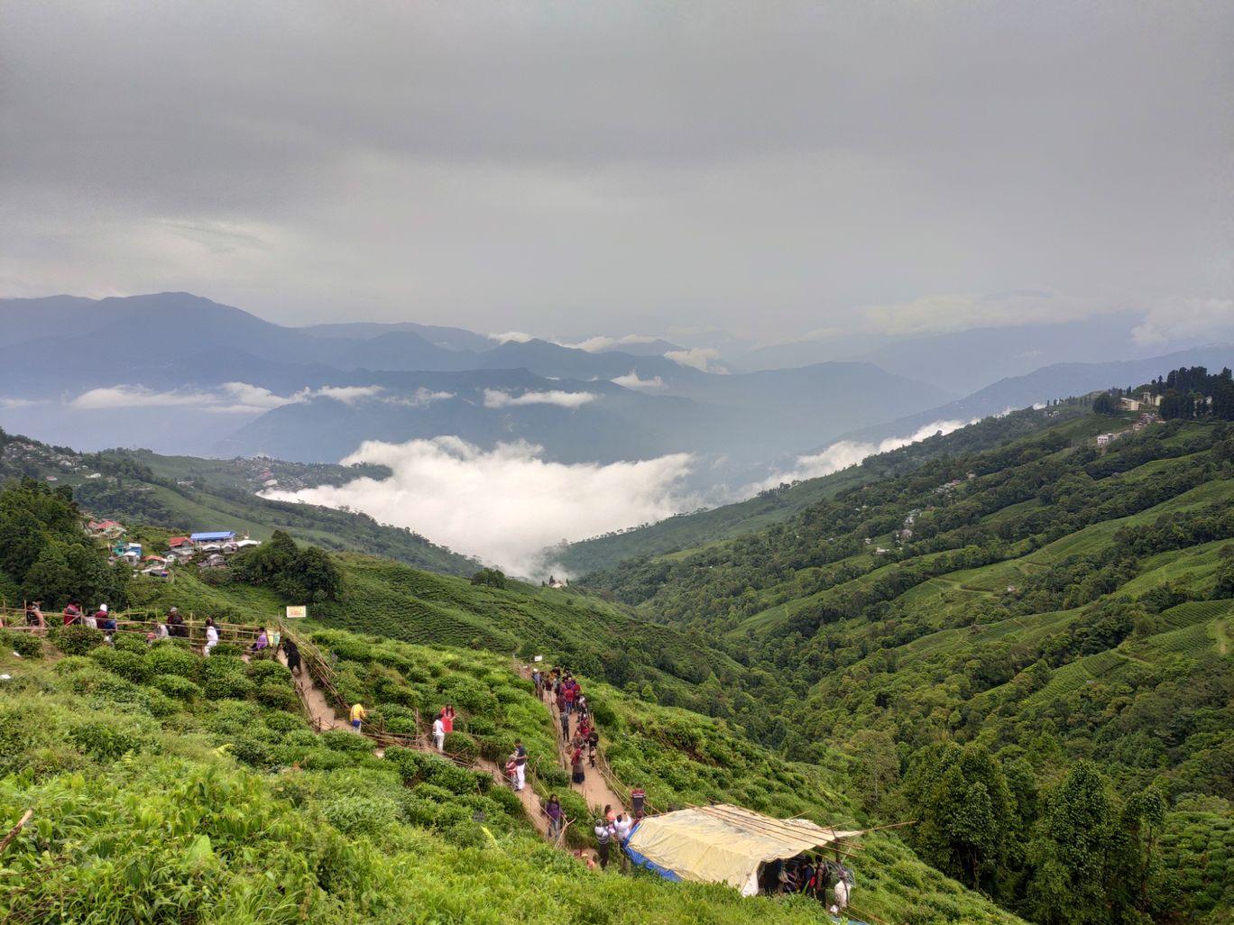 Photo of Darjeeling By Akash Jagdale