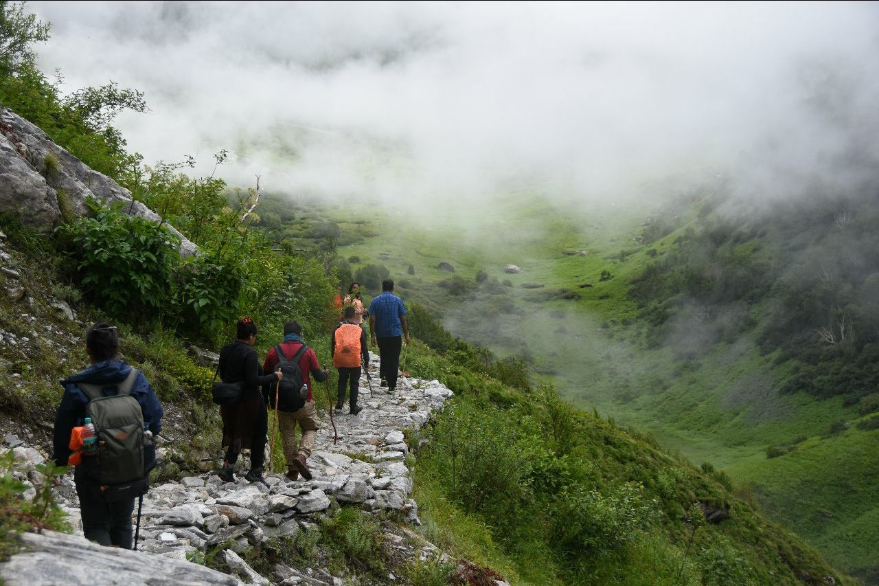 Photo of Valley of Flowers National Park By sundar sridharan
