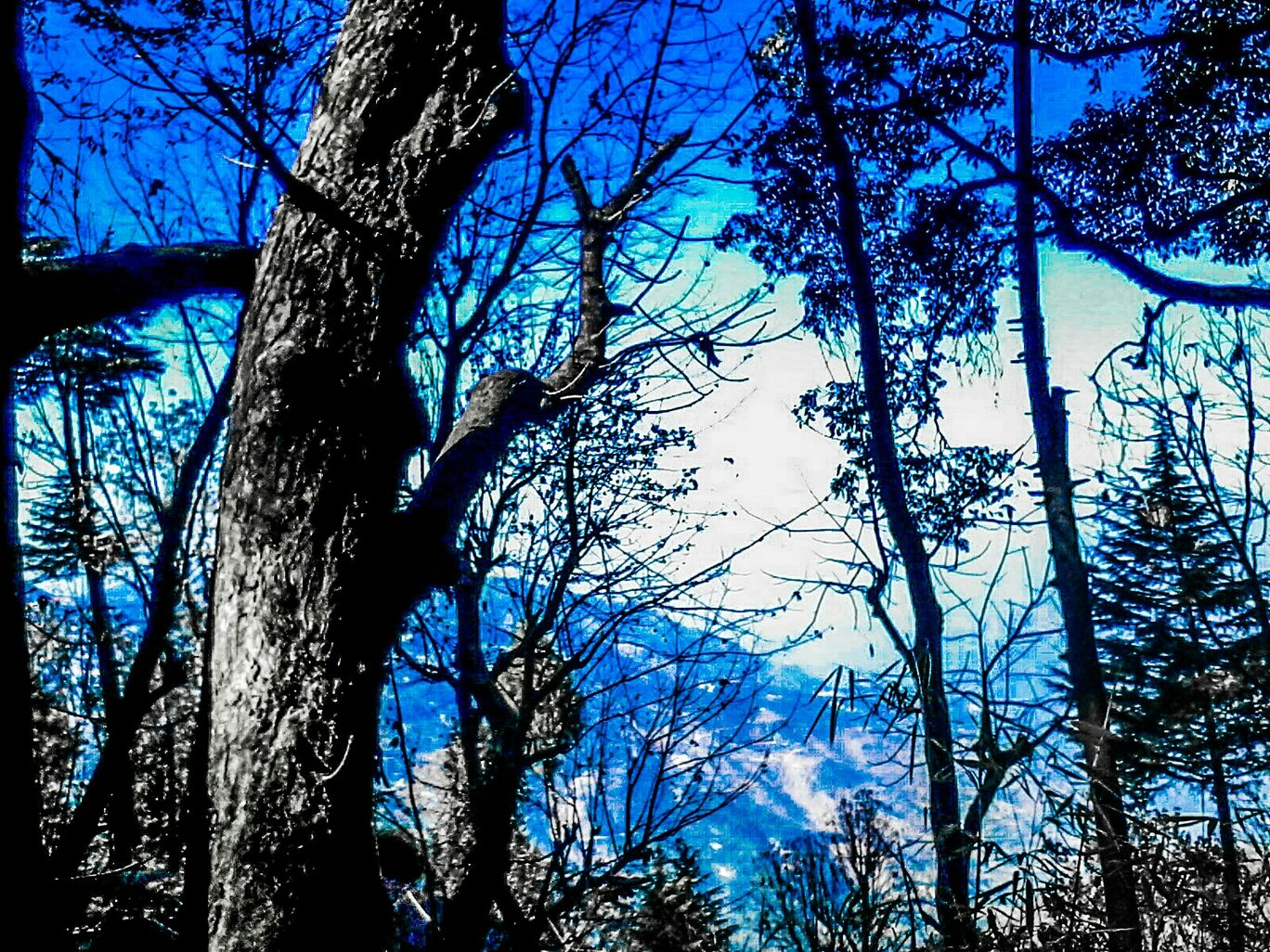 Photo of Landour By Passion Photography