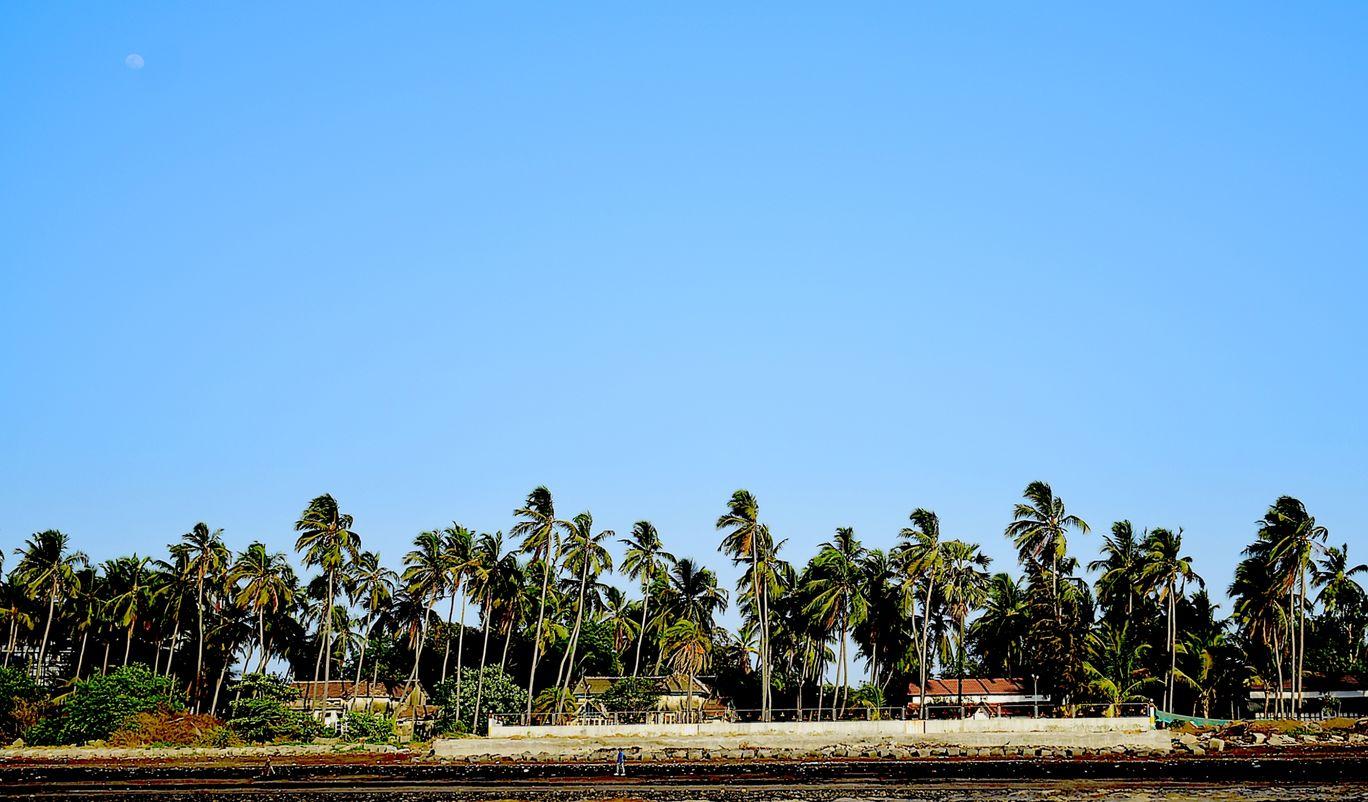 Photo of Daman By Mitesh Siddhpura