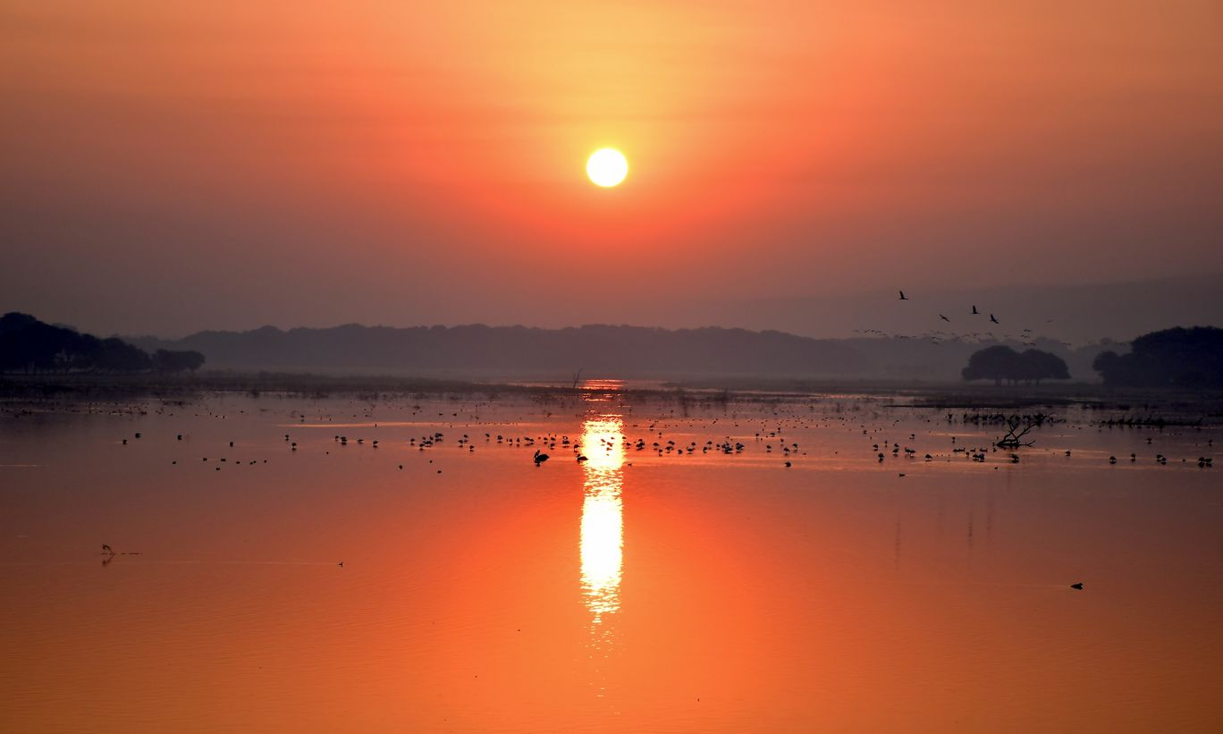 Photo of Thol By Mitesh Siddhpura