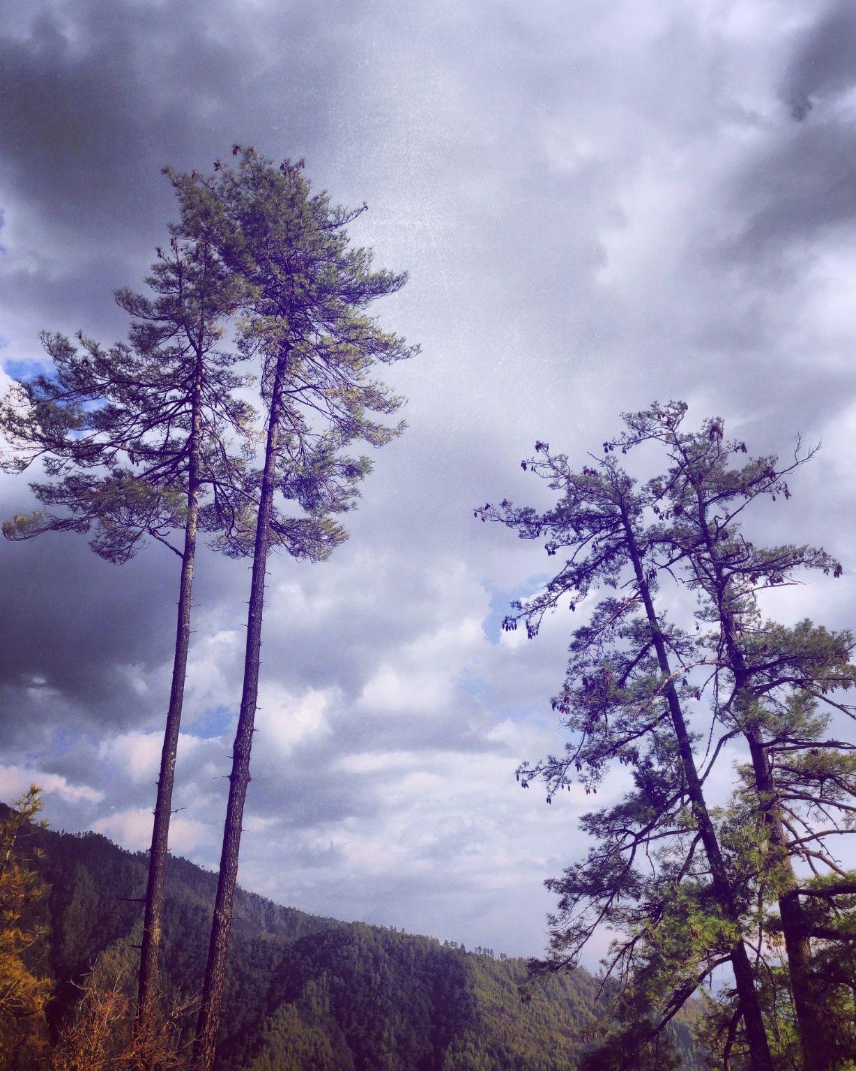 Photo of Bhutan By Ishita