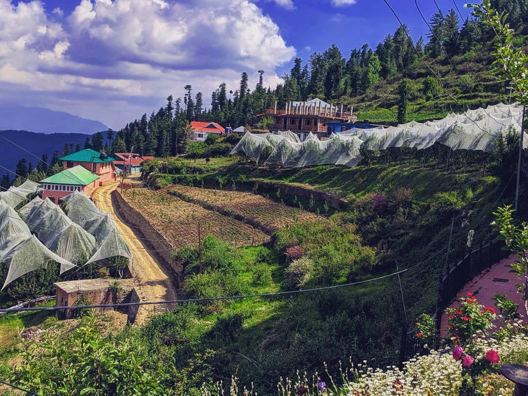 Photo of Kufri By jiya ambast