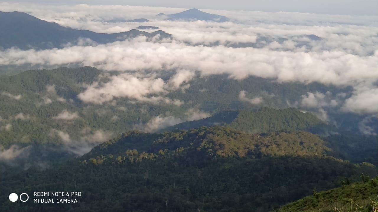 Photo of Mandalpatti Peak By Saubhik Bhaumik