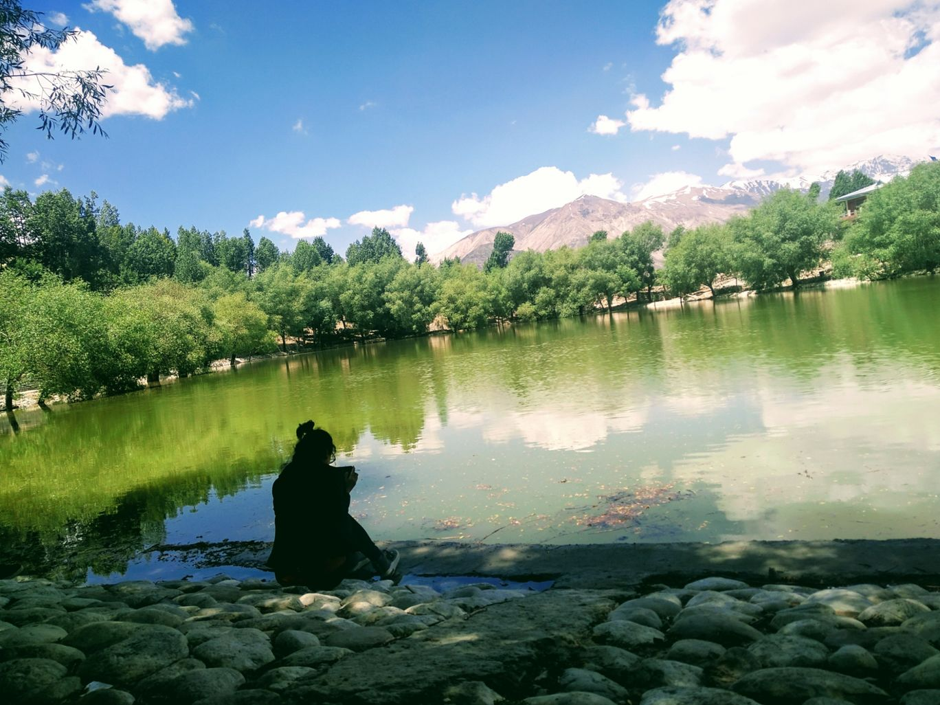 Photo of Telangi By Seema Tharangzag