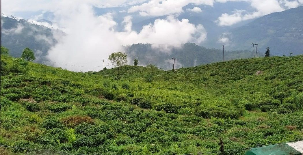 Photo of Darjeeling By Arzoo Chaudhary