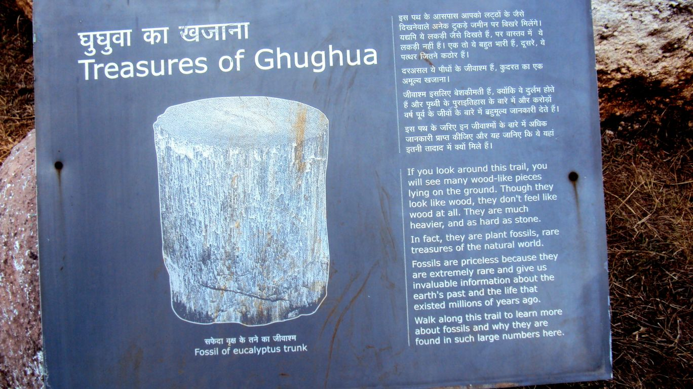 Photo of Ghughua Fossil Park By S H R I P A L