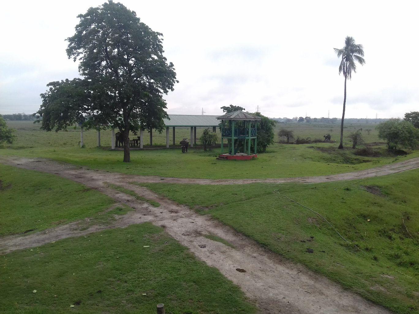 Photo of Pobitora Wildlife Sanctuary By Ankita Hazarika