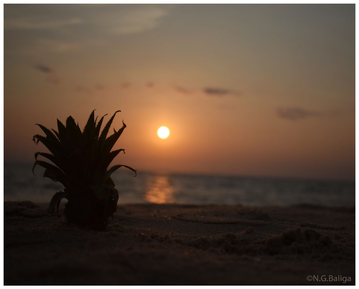Photo of Arthunkal Beach By Navaneeth Govind Baliga
