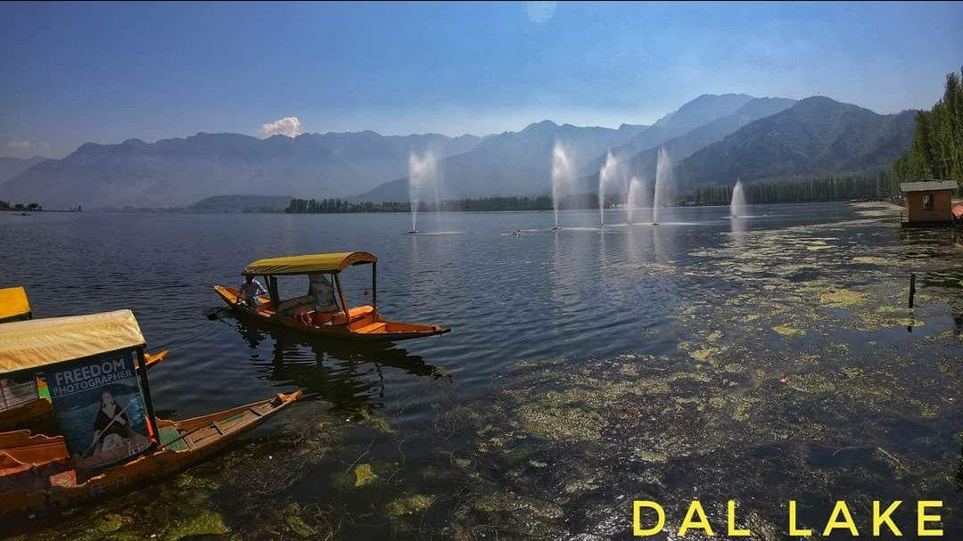 Photo of Dal Lake By Indiangopro. traveller