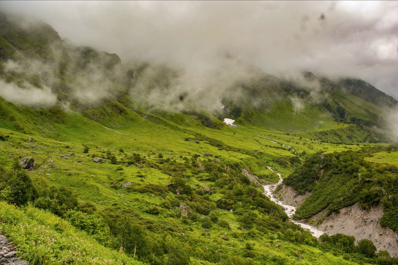 Photo of Valley of Flowers National Park By thatresfeber