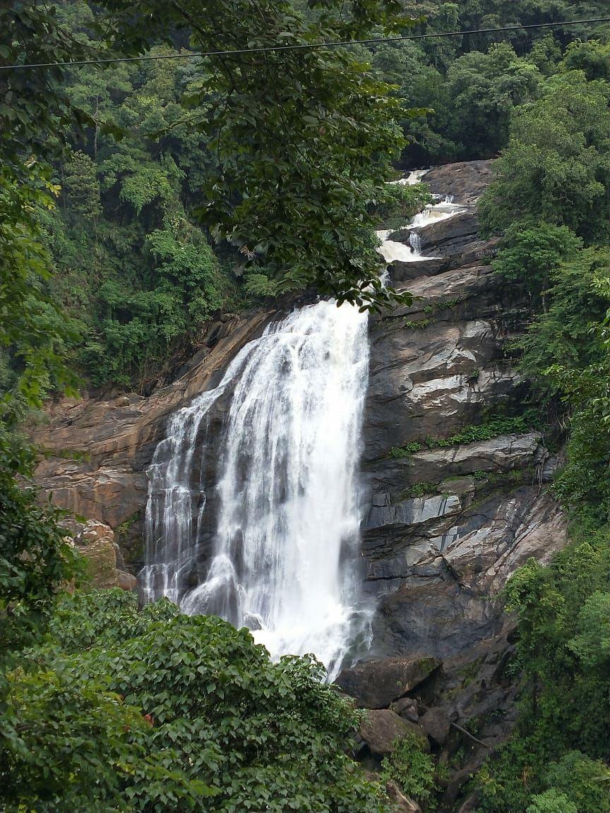Photo of Cheeyappara Waterfalls By yadwinder singh