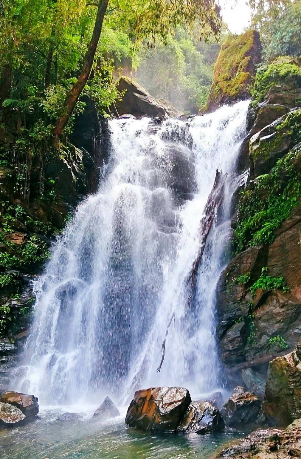 Photo of Hanumana Gundi Falls By Shikhar Leo