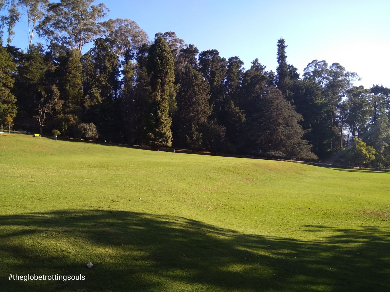 Photo of Ooty Botanical Gardens By The Globetrotting Souls