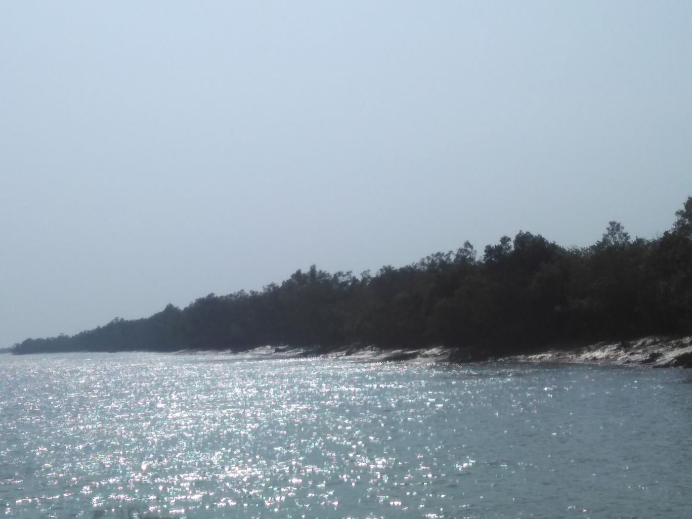 Photo of Sundarbans By Niloy Chowdhury