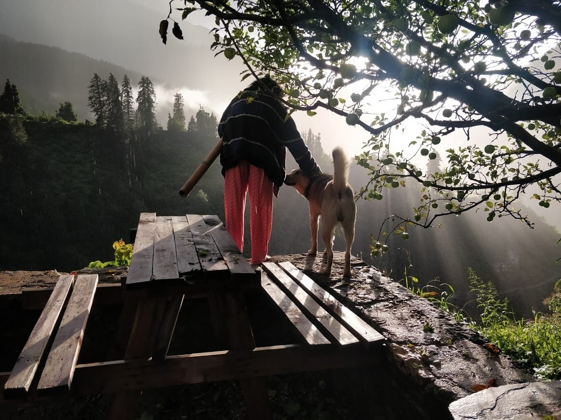 Photo of Kalgha By Utkarsh Tripathi
