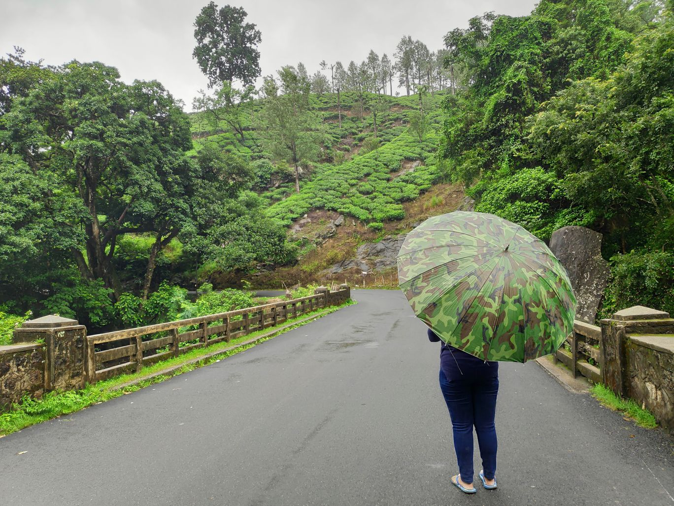 Photo of Lakkam Waterfalls Munnar By Kiran Kumar