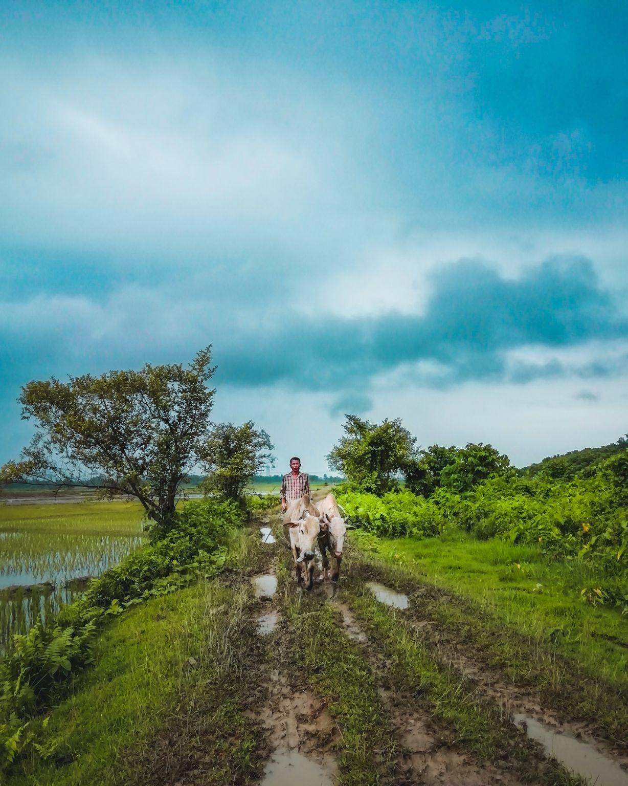 Photo of Udalguri By Sunit Roy
