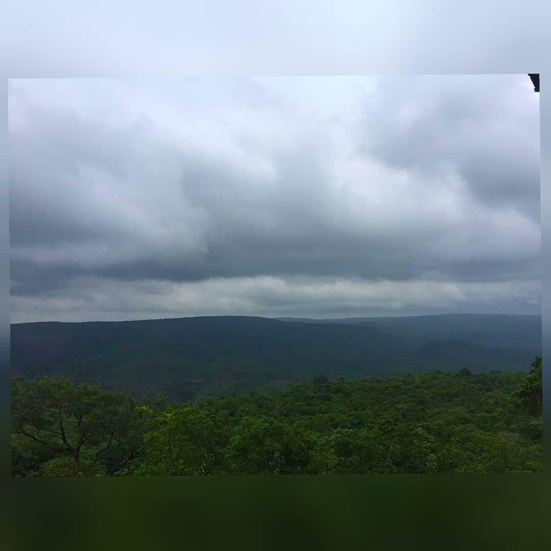 Photo of Nallamala Forest By Dhanush Reddy