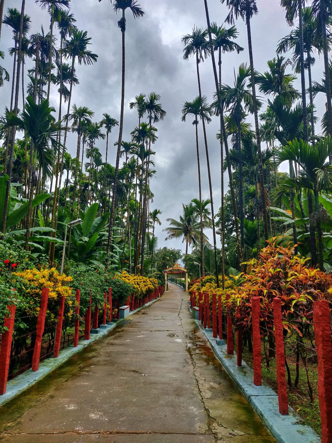 Photo of Chikmagalur By Punith N