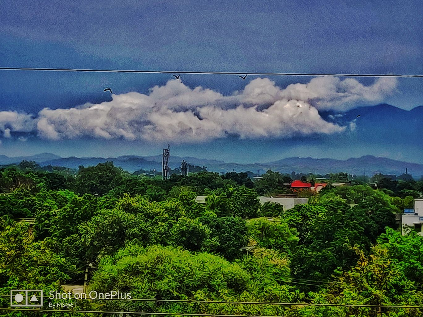 Photo of Sector 31 A By Mksingh