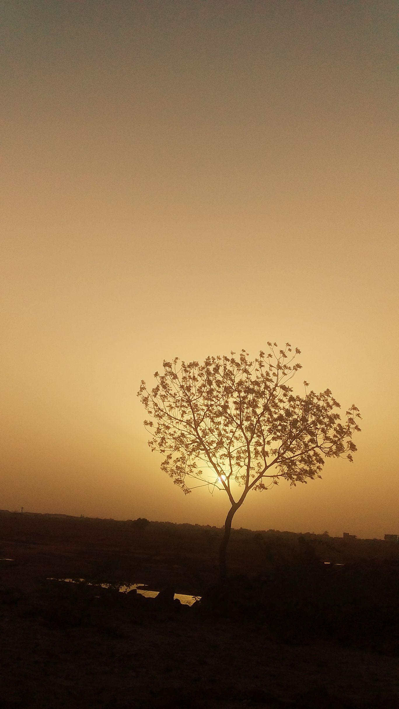 Photo of पोखरण By Bhawani shankar