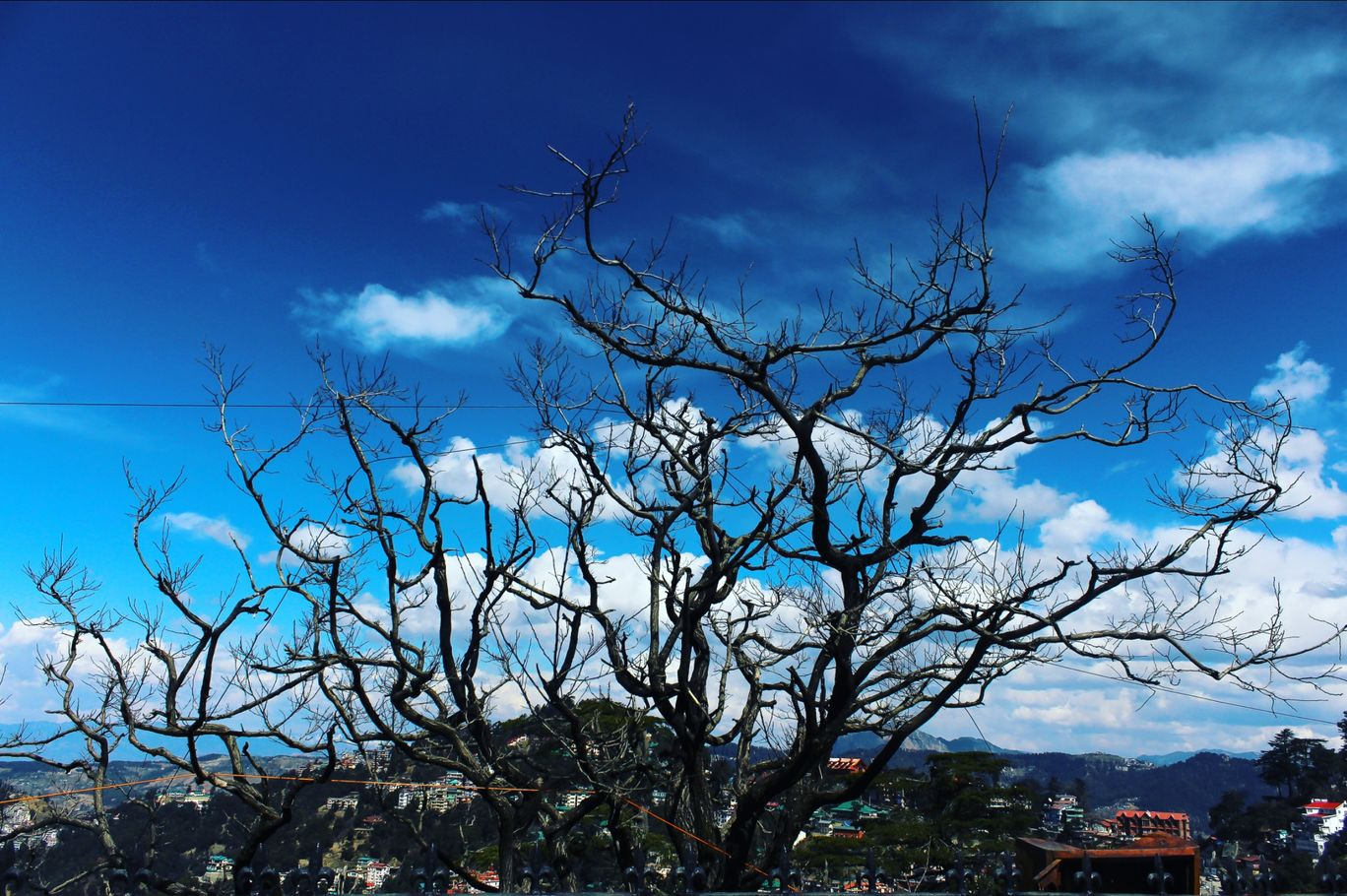 Photo of Shimla By adi photography