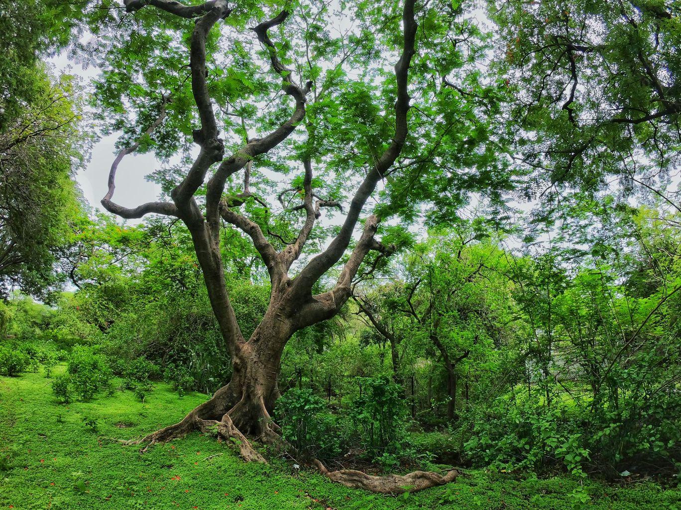 Photo of Ujjain By Shubham Pal